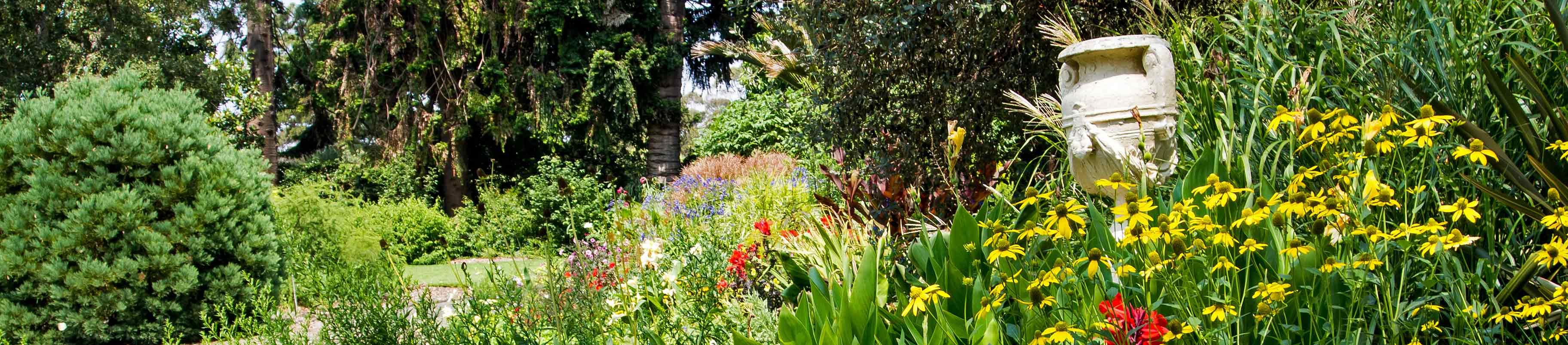 Jubaea Newsletter     Garden Highlights   Friends Geelong Botanic Gardens. Garden Stores Geelong. Home Design Ideas
