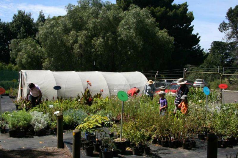 Plant NurseryThe Friends  Nursery   Friends Geelong Botanic Gardens. Garden Stores Geelong. Home Design Ideas