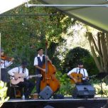 Hot Club Swing playing Music in the Gardens