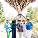 Jayne, Costa, Helena, Judith and Annie under the' Dragon Tree'