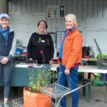 Autumn Plant Sale 2015
